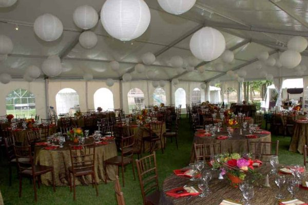 Tent Wedding Packages